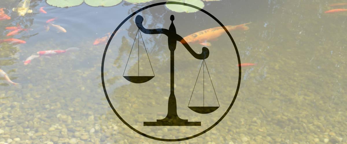 Législation ou réglementation pour le bassin de jardin