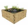 jardin-aquatique-hors-sol-taille-large-juncus-l