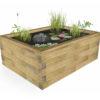jardin-aquatique-hors-sol-rectangulaire-juncus-r