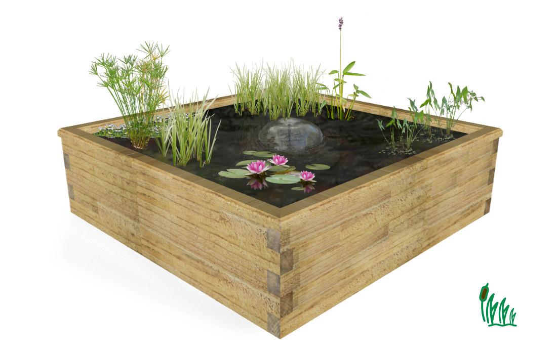 kit jardin aquatique hors sol cosy bassin de grande taille