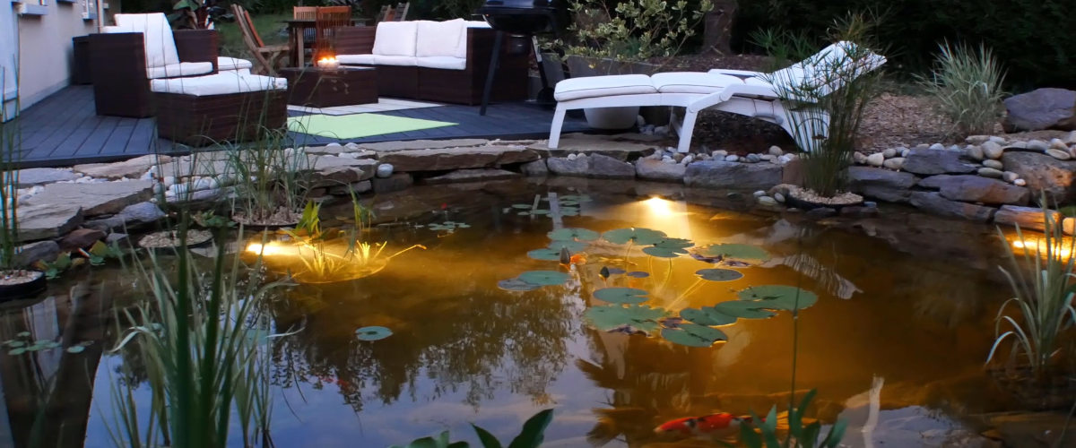 bassin de jardin réalisé par Cosy Bassin