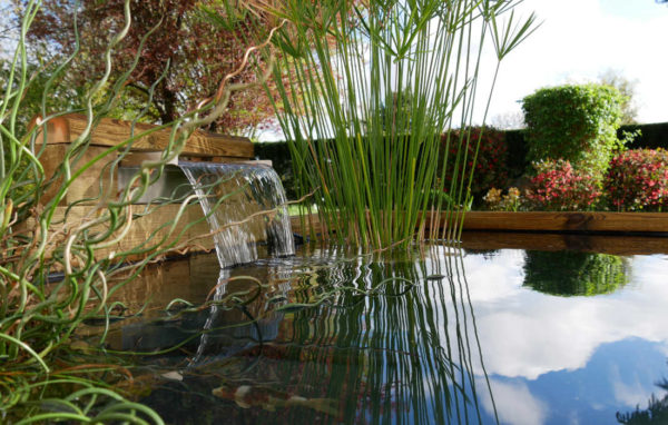 lame-d-eau-inox-gamme-bio-plus-cosy-bassin